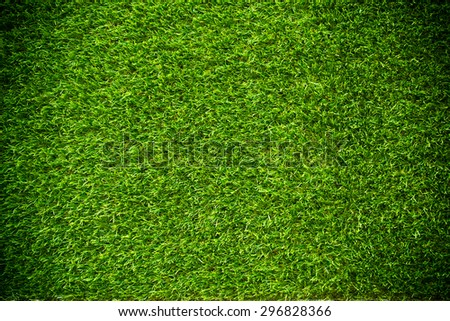 green grass natural background texture. - stock photo