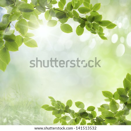 Green grass natural background with selective focus - stock photo
