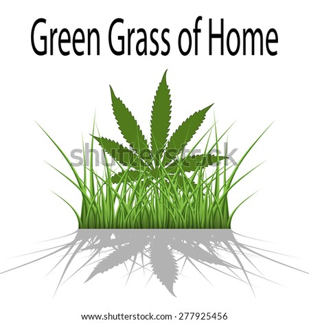 Green Grass of Home - stock photo