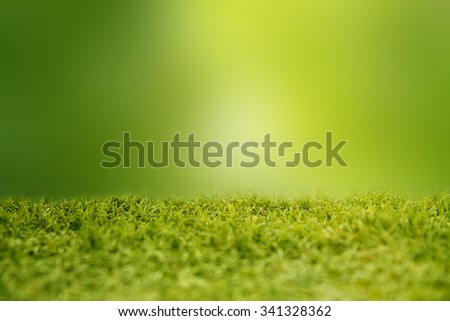 Green grass on green background. - stock photo
