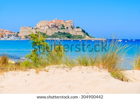 Green grass on sand dune on beach with blurred old town of Calvi in background, Corsica island, France - stock photo