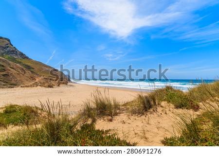 Green grass on sandy Castelejo beach, Algarve region, Portugal - stock photo