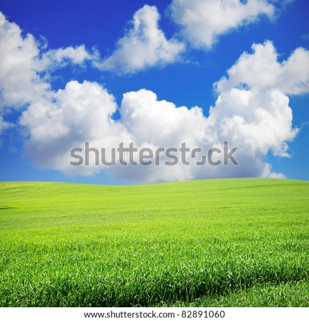 green grass over wonderful blue sky - stock photo