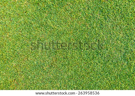 Green grass seamless texture. Seamless in only horizontal dimension  - stock photo