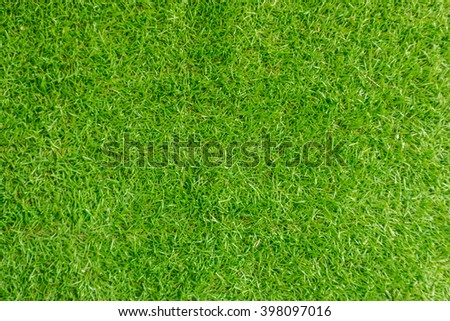 green grass texture and background - stock photo