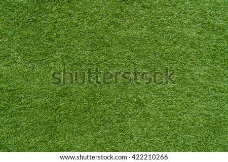 green grass texture background - stock photo
