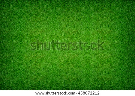 Green grass texture background for soccer sport or football sport and golf sport.