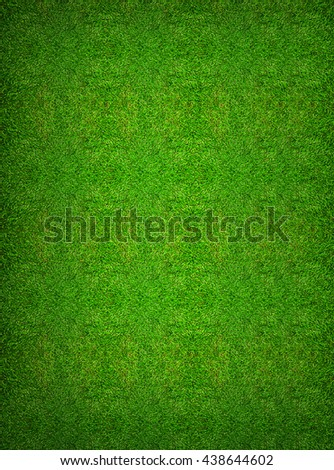 Green grass texture background for soccer sport or football sport and golf sport background. - stock photo