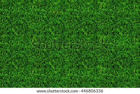 Green grass texture for background. Abstract natural texture background. - stock photo