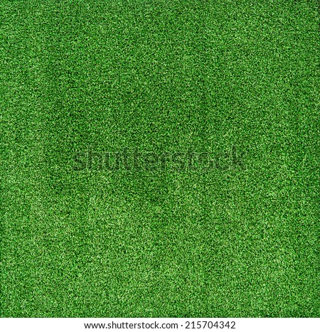 Green grass texture use for background