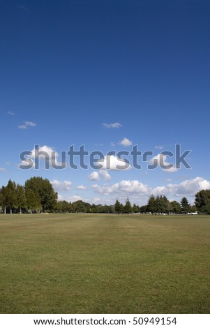 Green grass, trees  and blue sky nature background
