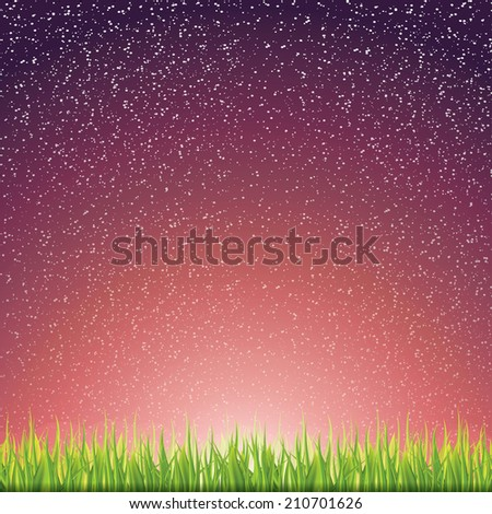 Green grass under the night sky  - stock photo