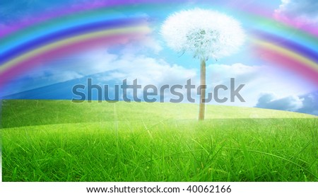 green grass with a blue sky and a rainbow - stock photo