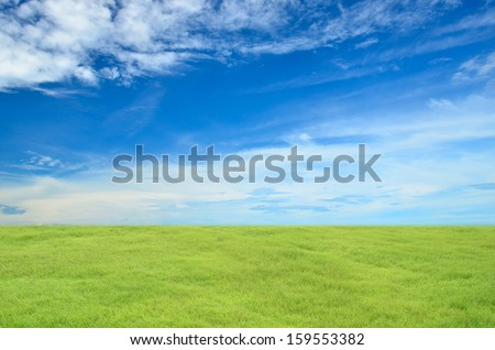 Green grass with blue sky as background  - stock photo