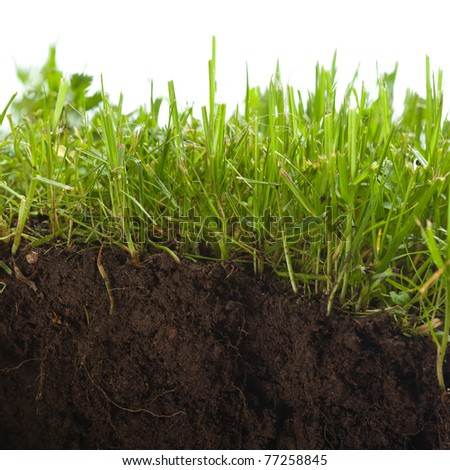 green grass with earth crosscut - stock photo