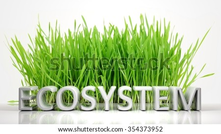 Green grass with Ecosystem 3D text, isolated on white background. - stock photo