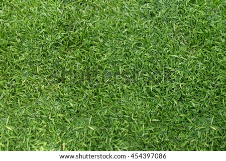 Green grass with floor background texture