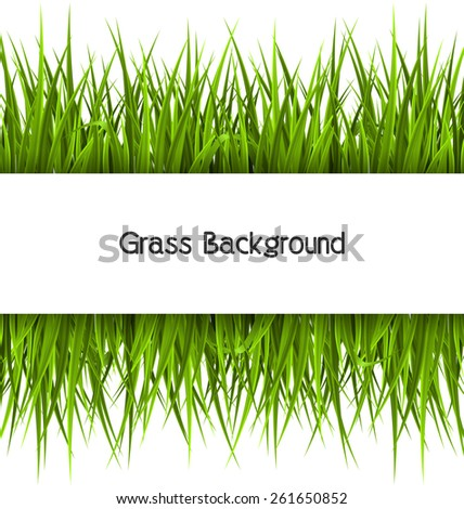 Green grass with frame isolated on white. Floral eco nature background - stock photo
