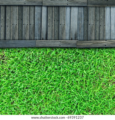 Green grass with old wood path background - stock photo