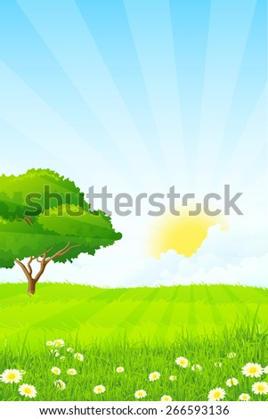 Green Grass with Tree, Sun, Clouds and Rays - stock photo