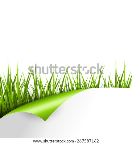 Green grass with wrapped paper sheet isolated on white background. Floral eco nature background - stock photo