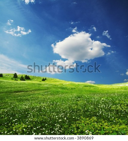 Green grassland and sky in the morning - stock photo