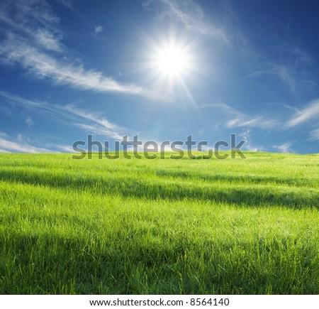 green grassland and sunny sky - stock photo
