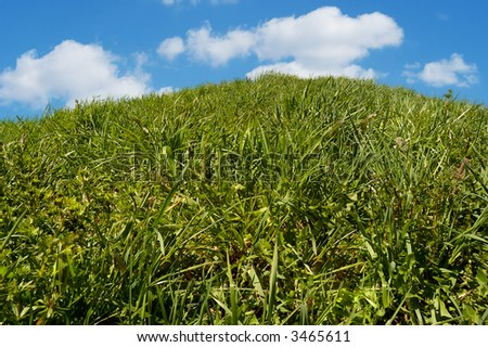 Green grassy field on hill with blue sky and clouds in background