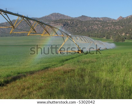 green hay field irrigated by circular spray irrigation system - stock photo