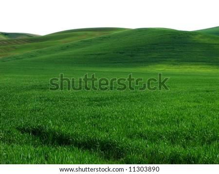 Green Hills - stock photo
