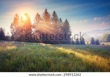 Green hills glowing by warm sunlight at twilight. Dramatic scene. Colorful sky. Carpathian, Ukraine, Europe. Beauty world. Retro and vintage style, soft filter. Instagram toning effect. - stock photo