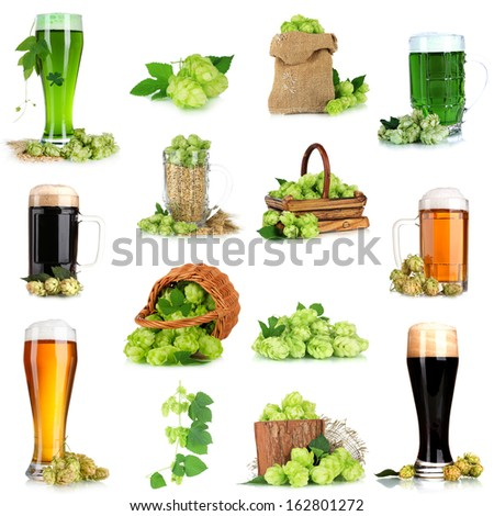 Green hop and beer  isolated on white - stock photo