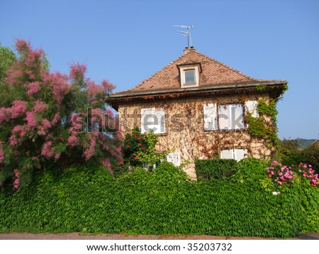 Green land villa - stock photo