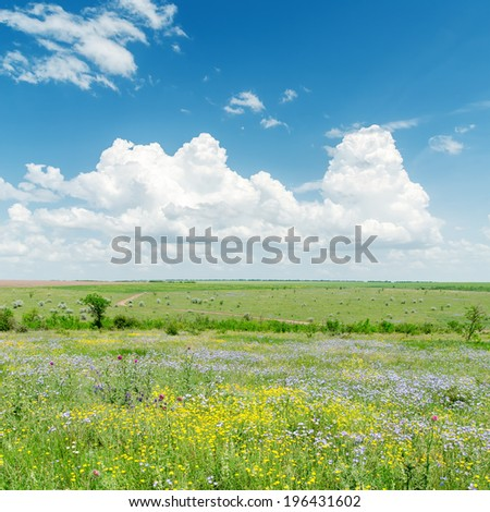 green landscape with flowers and clouds over it - stock photo