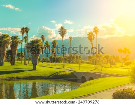Green landscape with tropical trees during warm bright clear sky day, vibrant colors - stock photo