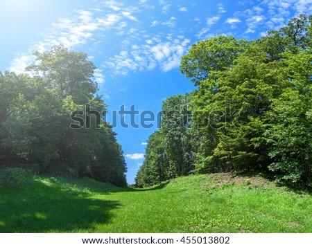 Green lawn with blue sky in park  beautiful morning light in public park with green grass field and green fresh tree plant perspective to copy space for multipurpose - stock photo