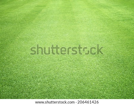 Green lawns golf courses and football pitches. - stock photo