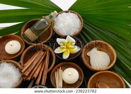 Green leaf background- Health spa