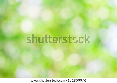 Green leaf boken blur for natural background - stock photo