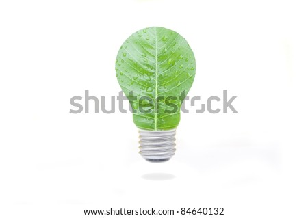 green leaf lamp in white isolate background