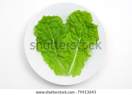 Green leaf lettuce on the plate - stock photo