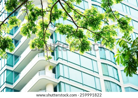 Green leaf morning sun wall windows Condominium. - stock photo