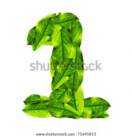 Green leaf number in white. Number 1
