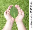 Green leaf on human hands with grass background. Concept for green earth, rebuilding earth with green energy. - stock photo