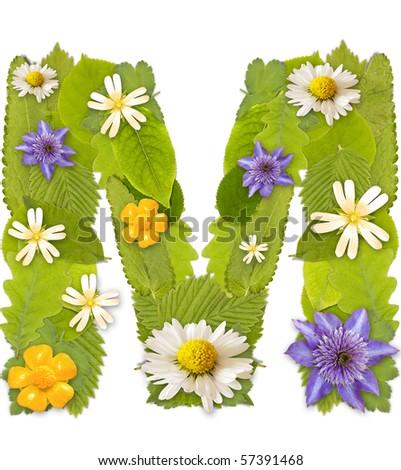 Green Letter m Logo Letter m Stock Photo Green