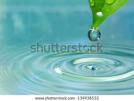 Green leaf with drop on water background - stock photo