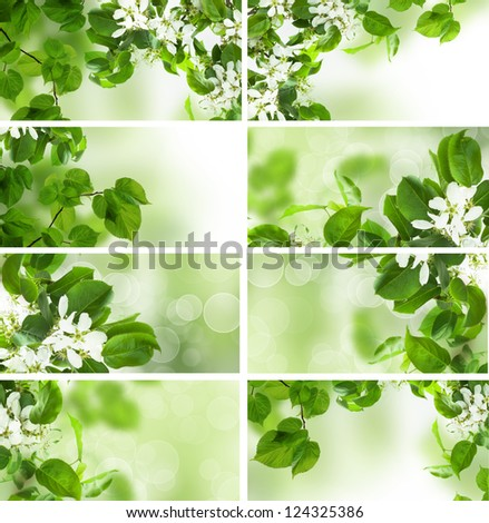 Green leaves border, summer and spring set - stock photo