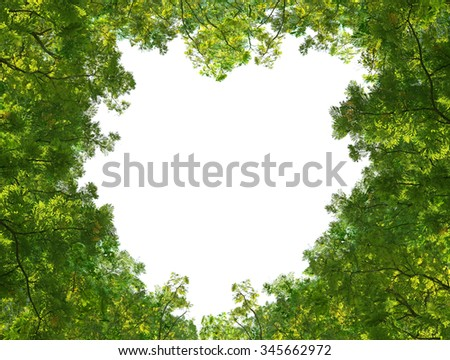 Green leaves isolated on white background in the middle of the heart. - stock photo
