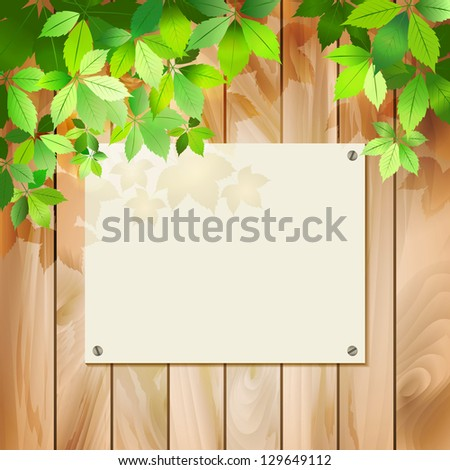 Green leaves on a wood texture. Spring or summer environmental background with tree branches, sunlight coming through the leaves wooden textured fence, blank sign board. Vector file in my portfolio - stock photo