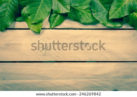Green leaves on wooden planks - stock photo